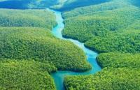 L'Ecuador sta per mettere all'asta circa tre milioni di ettari di foresta amazzonica, polmone verde della Terra