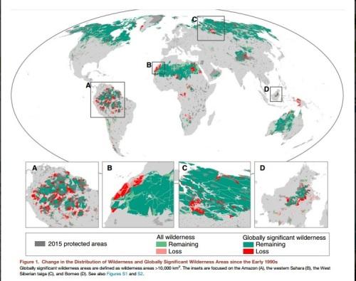 In 20 anni scomparso il 10% delle aree naturali della Terra